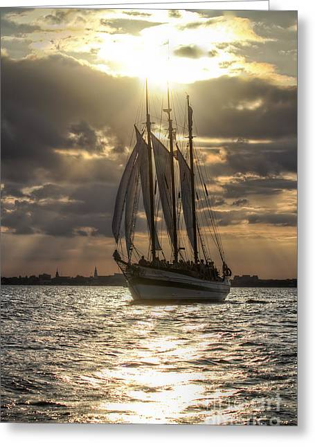Schooner Pride Charleston Sc Greeting Card by Dustin K Ryan