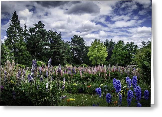 Schreiners Iris Gardens Greeting Card