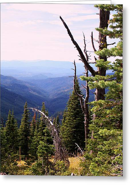 Schweitzer Mountain 1 Greeting Card
