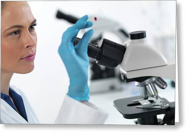 Scientist With Microscope Slide Greeting Card by Tek Image