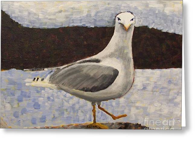 Scottish Seagull Greeting Card