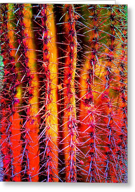 Scottsdale Saguaro Greeting Card