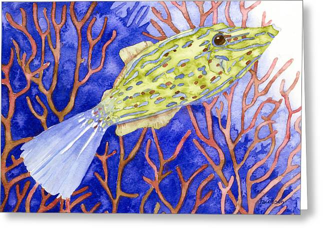 Scrawled Filefish Greeting Card
