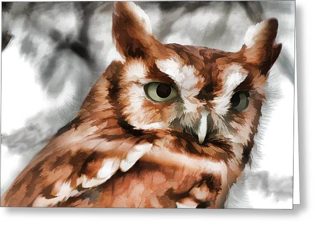 Greeting Card featuring the photograph Screech Owl Photo Art by Constantine Gregory