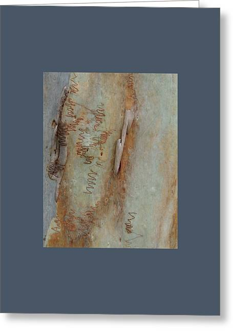 Scribbled Abstract Greeting Card by Denise Clark