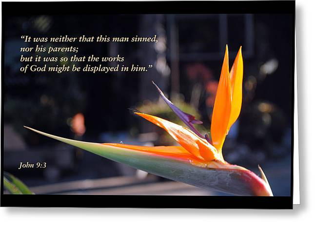 Scriptures Of Comfort 2 Greeting Card