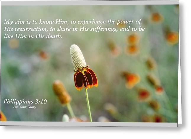 Scriptures Of Comfort 3 Greeting Card