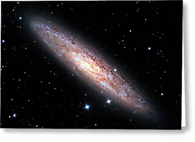 Sculptor Galaxy (ngc 253) Greeting Card by Damian Peach