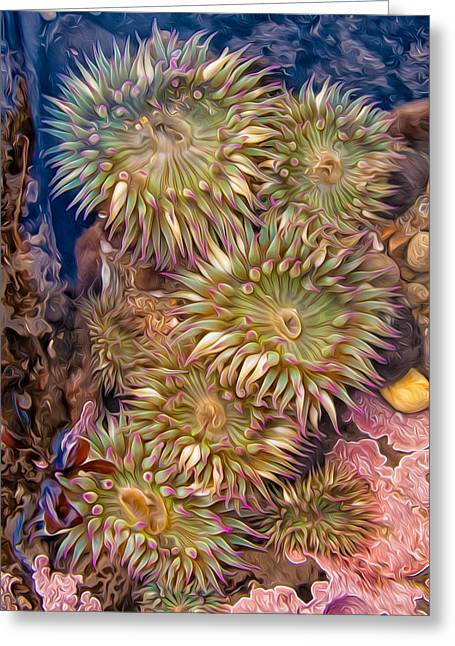 Sea Anemones Greeting Card