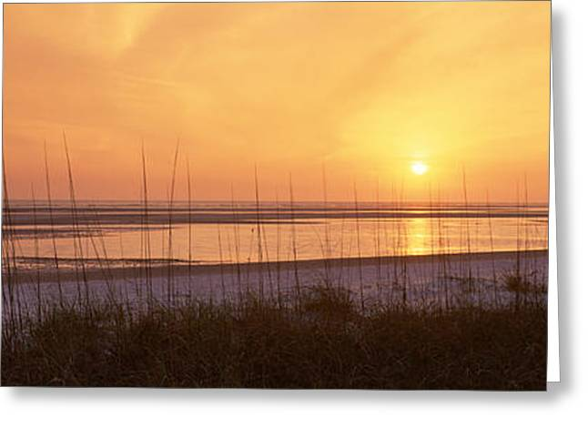 Sea At Dusk, Gulf Of Mexico, Tigertail Greeting Card by Panoramic Images