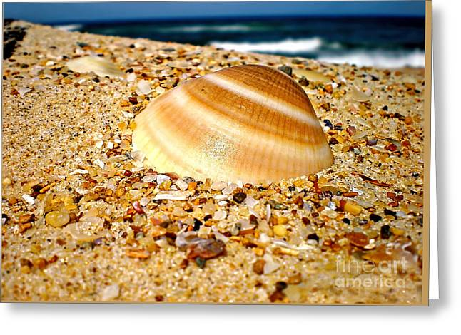 Sea Beyond The Shell Greeting Card by Kaye Menner