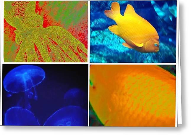 Sea Creatures Collage Greeting Card by Susan Garren