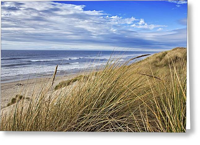 Sea Grass And Sand Dunes Greeting Card