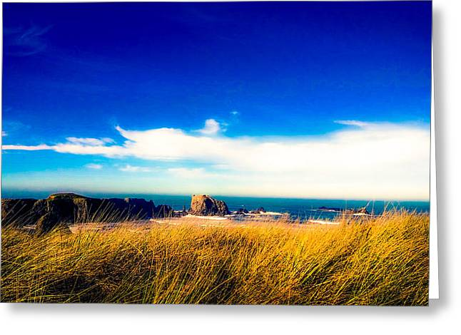 Sea Grass At Elephant Rock Greeting Card