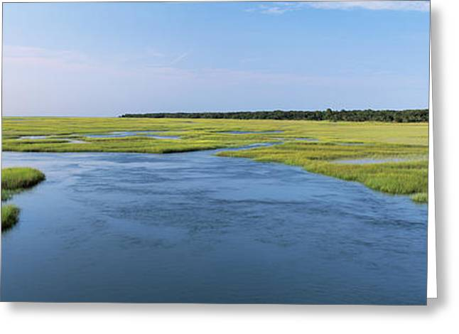 Sea Grass In The Sea, Atlantic Coast Greeting Card by Panoramic Images