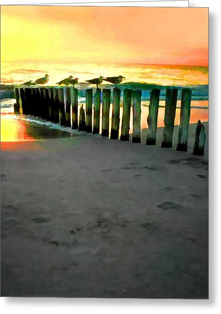 Sea Gulls On Pilings At Sunset Greeting Card by Elaine Plesser