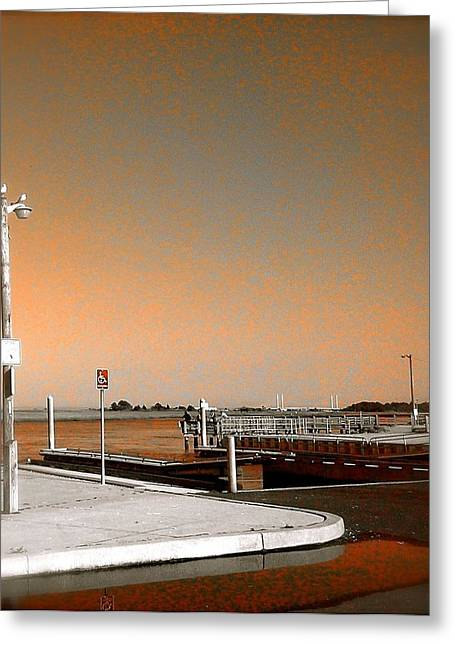 Sea Gulls Watching Over The Wetlands In Orange Greeting Card by Amazing Photographs AKA Christian Wilson