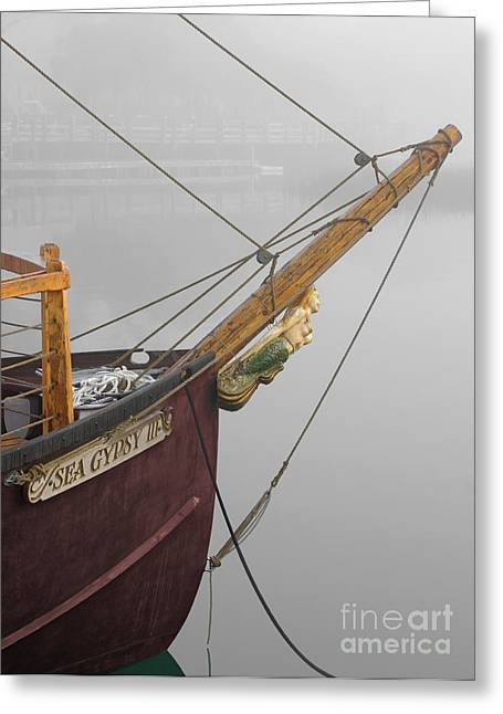 Sea Gypsy Greeting Card