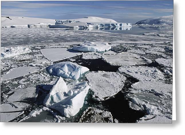 Sea Ice Weddell Sea Antarctica Greeting Card by Hiroya  Minakuchi