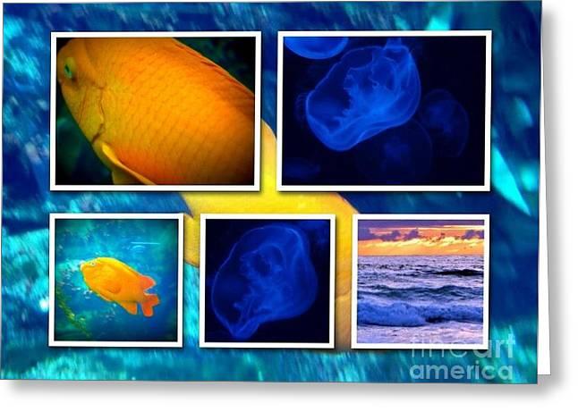 Sea Jelly Fish Greeting Card by Susan Garren