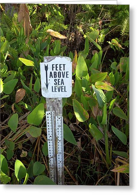 Sea Level Indicator Greeting Card by Jim West