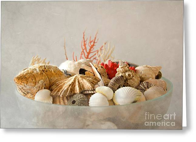 Sea Life IIi Greeting Card