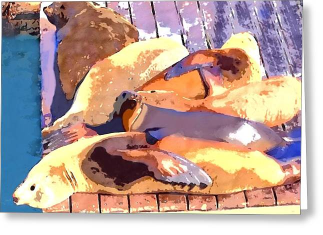 Sea Lions At Peir 39 In Sf Greeting Card