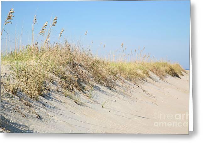 Sea Oat Serenity Greeting Card by Suzi Nelson