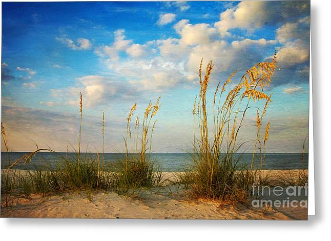 Sea Oats At Sunset Greeting Card