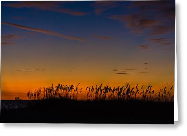 Sea Oats At Twilight Greeting Card