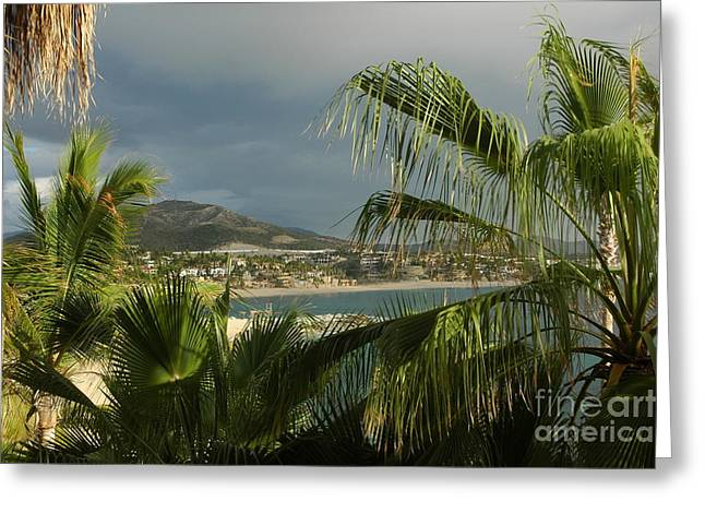 Sea Of Cortez Greeting Card by M West