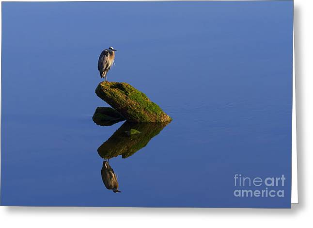 Sea Of Tranquility Greeting Card by Mike  Dawson