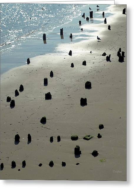Sea Piles Greeting Card by Deborah  Crew-Johnson