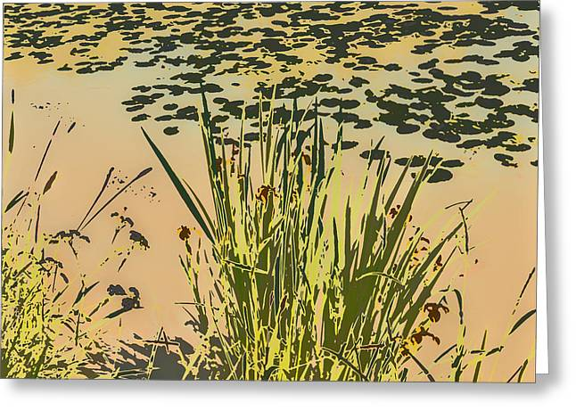 Greeting Card featuring the photograph Sea Plants Abstract by Leif Sohlman