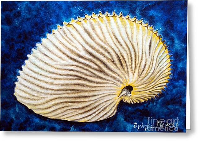 Sea Shell Original Oil On Canvas No.2. Greeting Card by Drinka Mercep