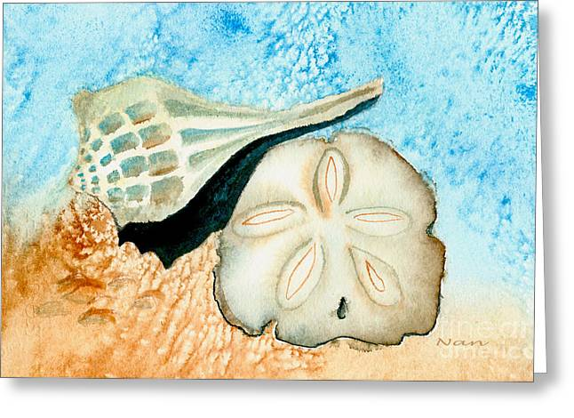 Sea Shell Treasures From The Ocean  Greeting Card