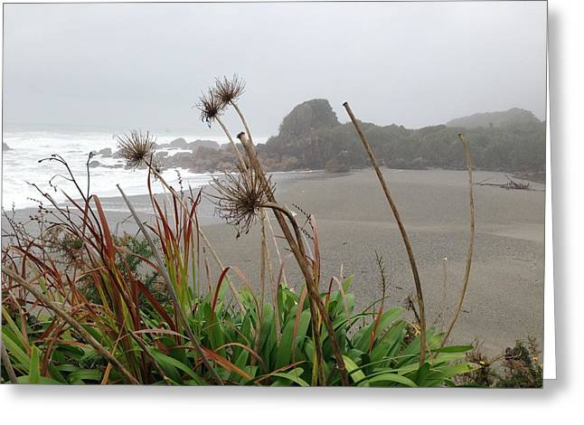 Sea Shore Greeting Card by Ron Torborg