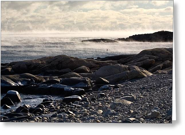 Sea-smoke At Schoodic Greeting Card by Brent L Ander
