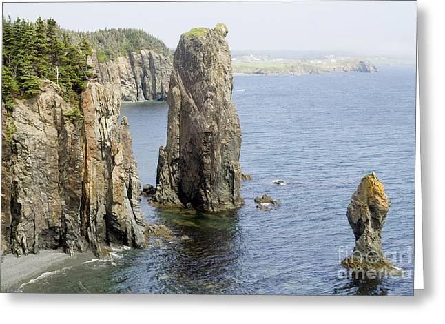 Sea Stacks Newfoundland Greeting Card by Liz Leyden