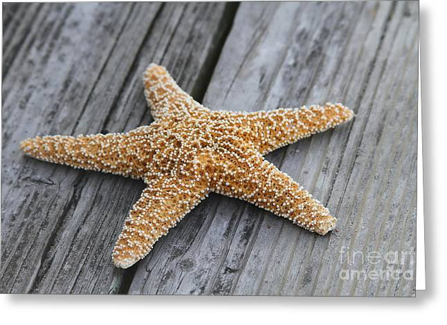 Sea Star On Deck Greeting Card