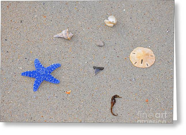 Sea Swag - Dark Blue Greeting Card by Al Powell Photography USA
