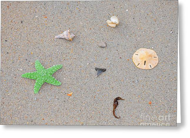 Sea Swag - Green Greeting Card by Al Powell Photography USA
