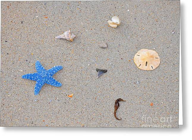 Sea Swag - Light Blue Greeting Card by Al Powell Photography USA