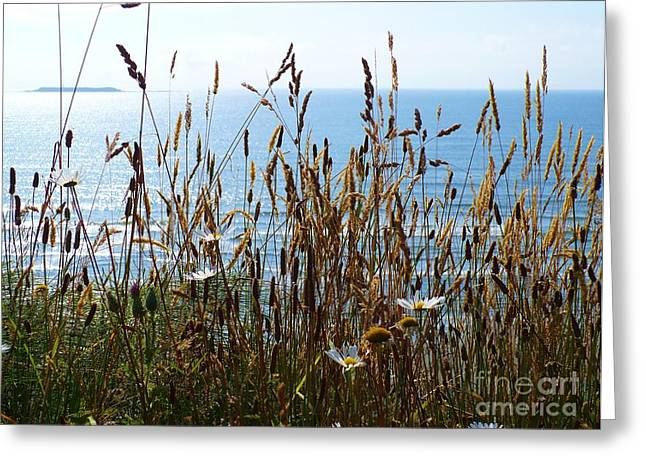 Sea Through Flora Greeting Card by Gayle Swigart