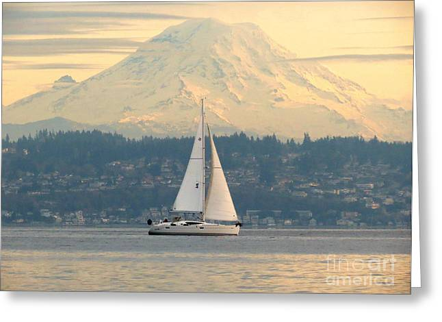 Greeting Card featuring the photograph Sea To Sky by Gayle Swigart