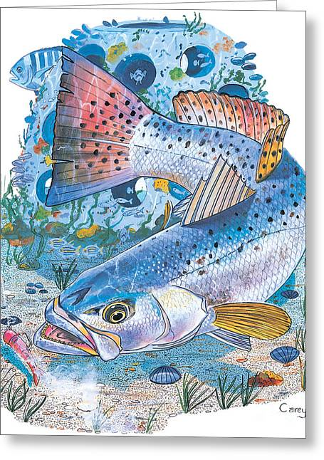 Sea Trout Wreck Greeting Card by Carey Chen