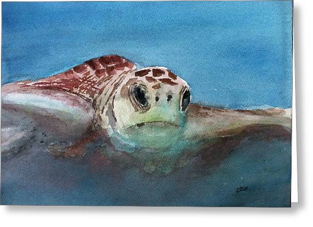 Sea Turtle  Greeting Card by Stephanie Sodel