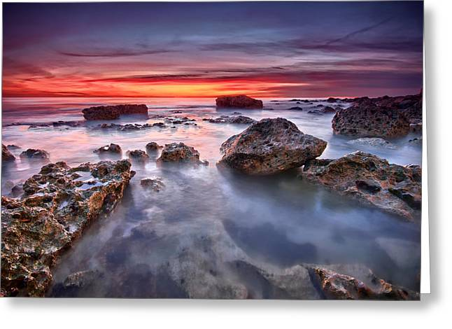 Seaford Rock Pool Greeting Card by Mark Leader