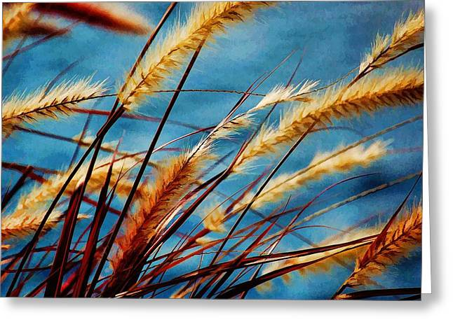 Seagrass In The Breeze Greeting Card by Pamela Blizzard