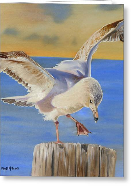 Seagull Ballet Greeting Card by Phyllis Beiser